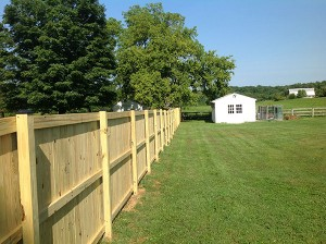 Fence 117