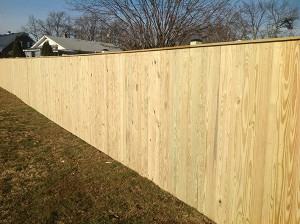 Fence 26