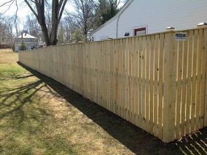Fence 61