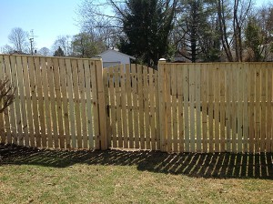 Fence 62