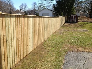 Fence 63